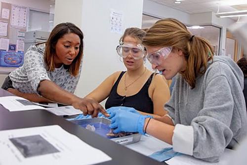 Neuroscience | Sewanee: The University of the South