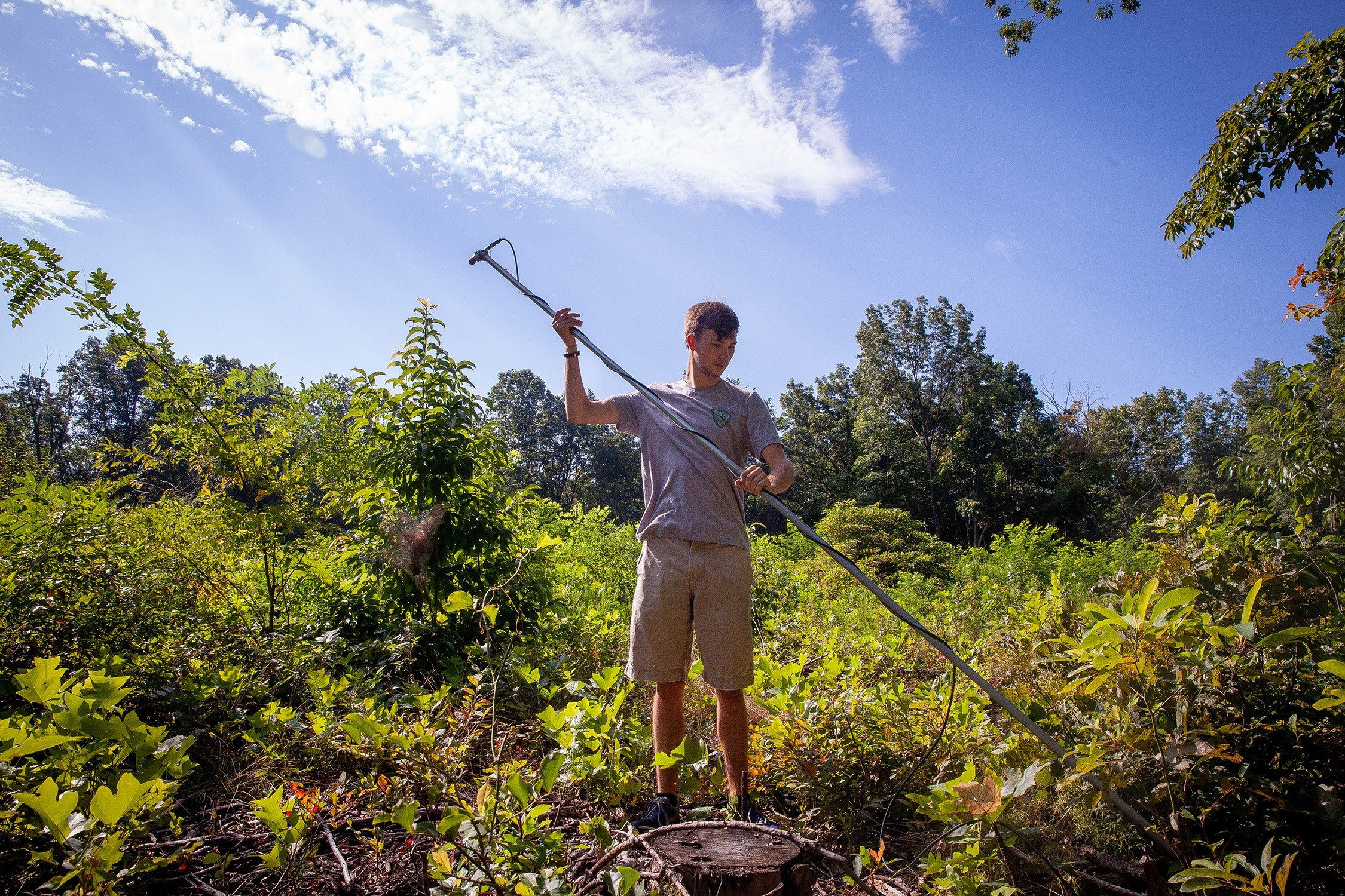 Cole Johnson, C'20, sets up a bat monitoring microphone in a forest clearing on the Domain.